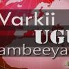 Barnaamij Saameynta Somaliland Ee Isbadalka Siyaasadeed Ee Mandaqada Geeska Afrika