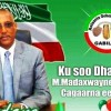 MADAXWAYNE MUUSE BIIXI IYO WAFTI UU HOGAAMINAYO OO LAFILAYO IN MAALINTA BARI AH SOCDAAL KU TAGAAN GOBOLKA GABILEY IYO WAXA UU DAARAN YAHAY!!